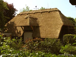 thatched roof, reed roof on an agritourism building