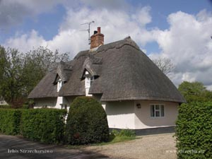 thatched roof, straw roof in a country house in England