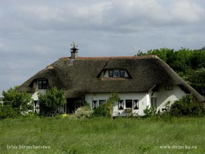 thatched roof in a country cottage