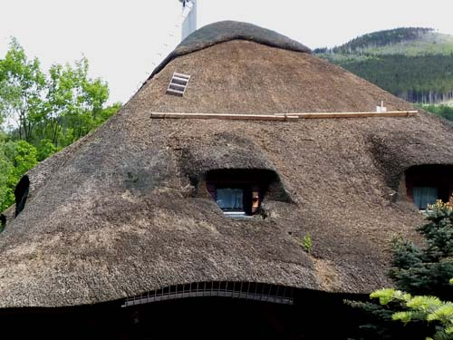 Thatched roof: dense thatch