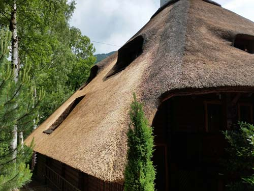 Thatch - the western side of the roof after the service by Irbis Thatcher
