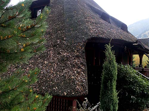 Thatch: roof from the north-west side before service