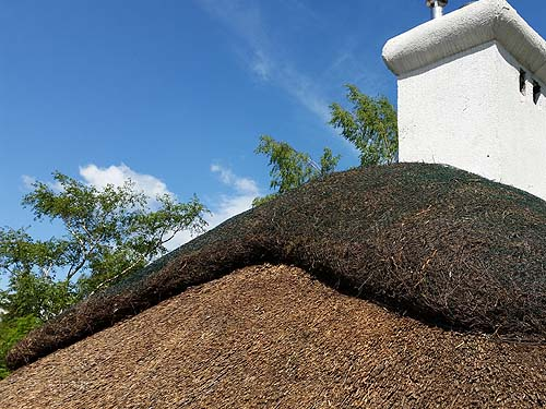 Thatched roof: ridge through the site with heather thatch concentrated