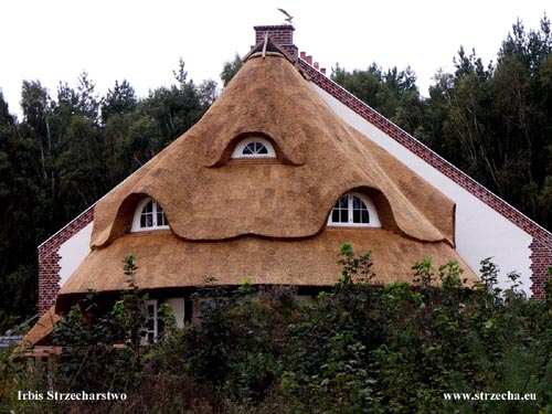 Reed roof Irbis Reserve Beaver - thatched roof at a new home - West Pomerania!