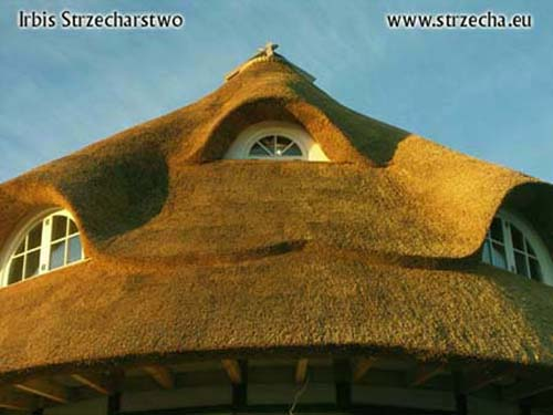 Thatch cottage: almost the end