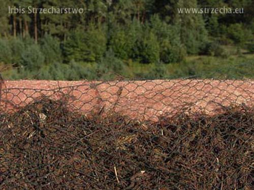 Thatched roof: filling the ridge with heather - underneath the protection of the roof against moss and lichen