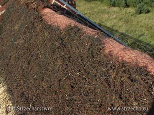 Reed roof: filling the ridge with heather - underneath securing the roof against moss