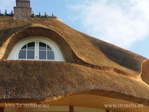 Reed roof: thatched roof window 'eye crop' Irbis Thatcher