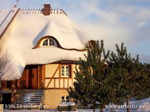 Thatching - thatched roof when snow covers it