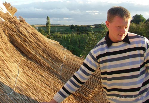 Irbis Thatching: thatch in the Netherlands is my everyday