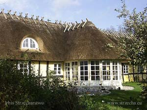 Irbis Thatching Rethatching Services: renovation of thatch in Denmark in Aalsrode - 2005