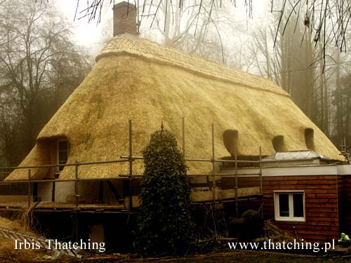 A house in the Danish province - thatched roofing after renovation