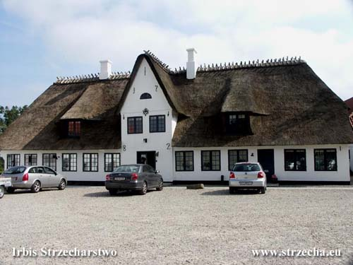 Thatch in Rinkenaes - during the thatched roofing, the shape was changed, the spacing was increased and the windows were enlarged