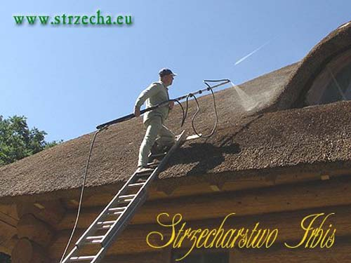 Protection against ignition thatch - impregnation