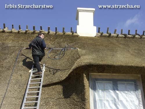 Protection of the thatch against ignition - impregnation