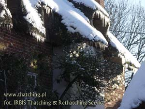 Straw roof and icicles decorated with icicles in Wildshire