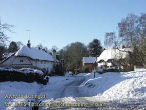 Thatch of reeds in Wildshire - recreational village full of charm in the winter